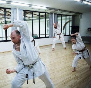 voksne træner basai-dai
